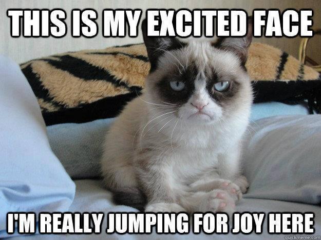 grumpy cat excited